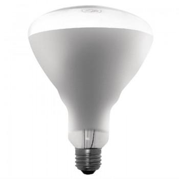 Buffalo 250W Shatterproof Infrared Heat Lamp ES